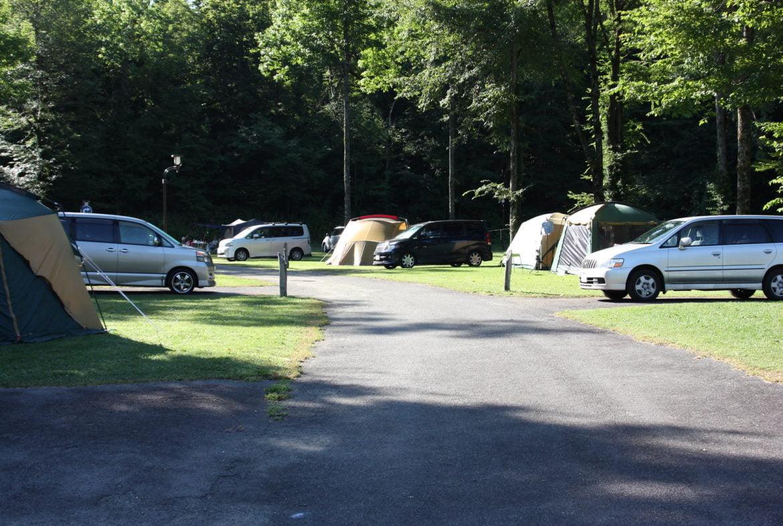 Camping arboré